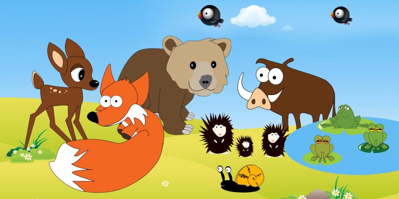 Quiz - Zwierzęta